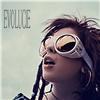 Evolucie (Vinyl)