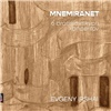 Mneminaret - 6 Bratislavských koncertov / Ensemble Opera Diversa Brno