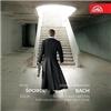 Pavel Šporcl - Bach - Sonáty a partity